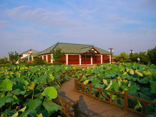 蘇巍:休閑農業經營模式的4個創新思路
