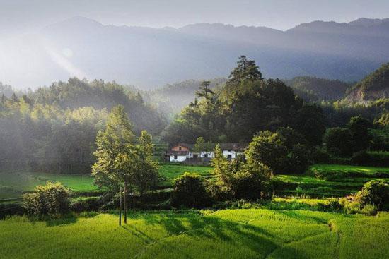 美丽乡村,美丽乡村规划,美丽乡村建设